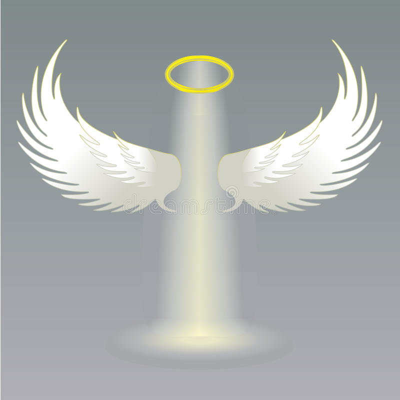 Angel wings and golden halo vector illustration