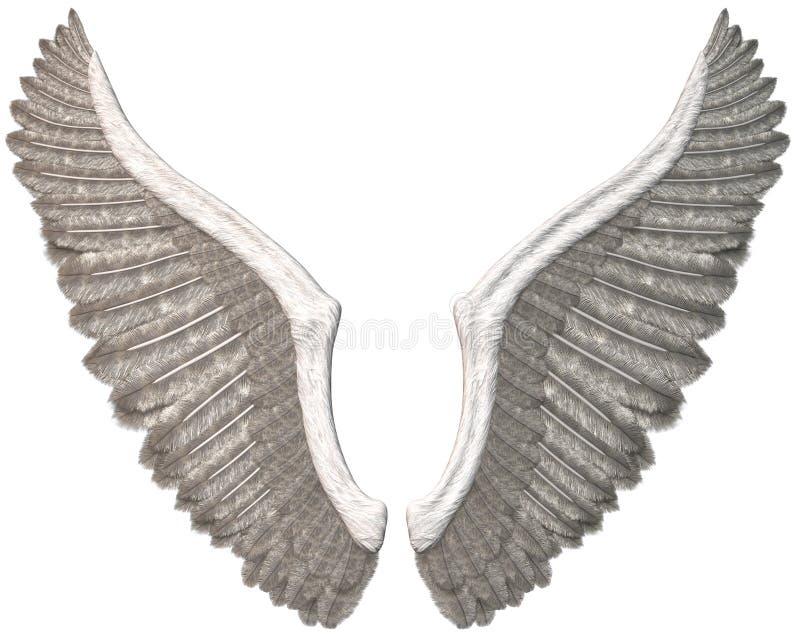 Angel Wings Illustration Isolated branco ilustração royalty free