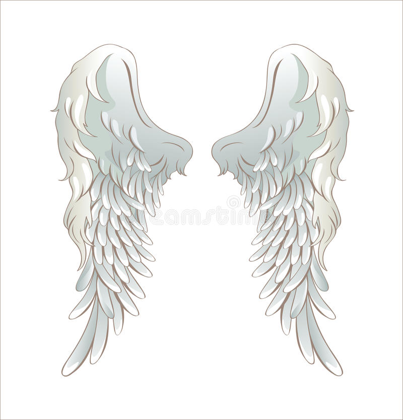 Angel wings. Illustration of angel wings isolated on white stock illustration