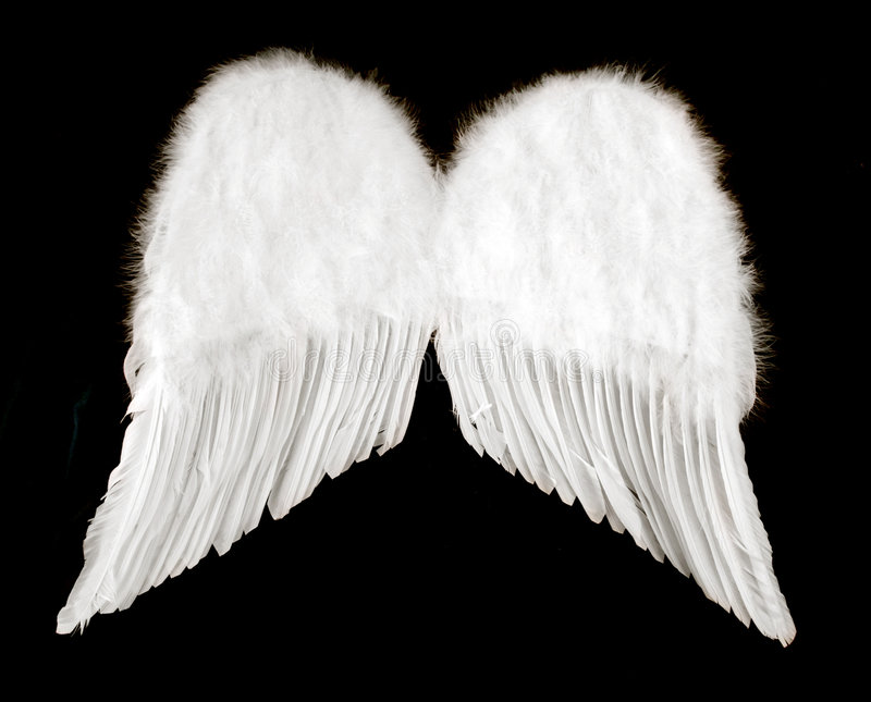 Angel Wings Isolated on Black royalty free stock photos