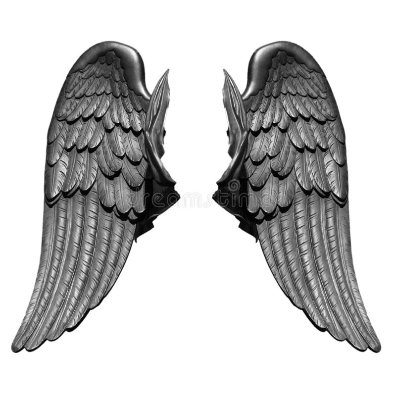 Angel wings isolated on white background stock image