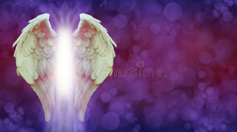 Angel Wings and Magenta Healing Light Banner royalty free illustration