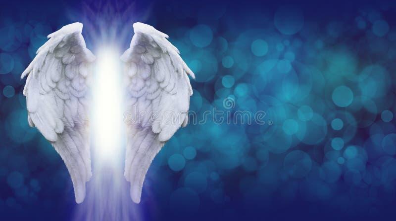 Angel Wings na bandeira azul de Bokeh fotografia de stock royalty free