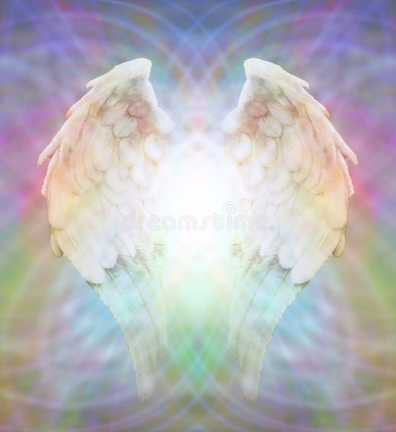 Angel Wings na Web colorido da matriz ilustração do vetor