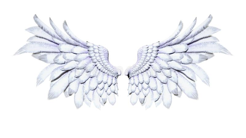 Angel Wings, White Wing Plumage on White Background. 3d Illustration Angel Wings, White Wing Plumage on White Background stock illustration