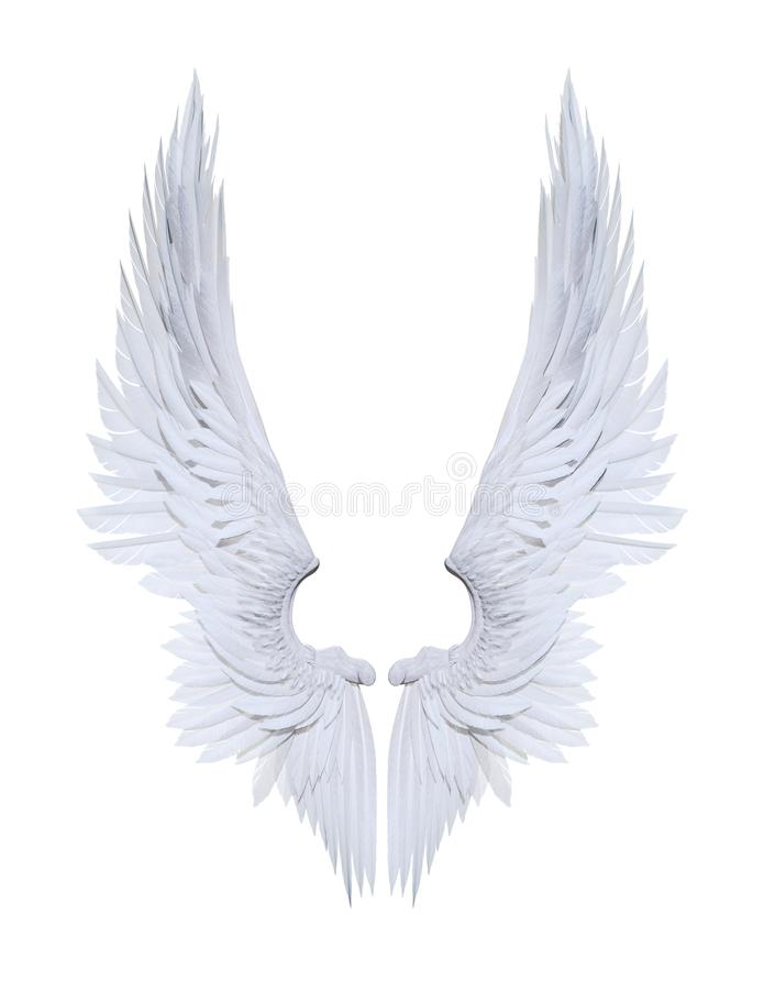 Angel wings, white wing plumage isolated on white. 3d Illustration Angel wings, white wing plumage isolated on white background with clipping path royalty free illustration