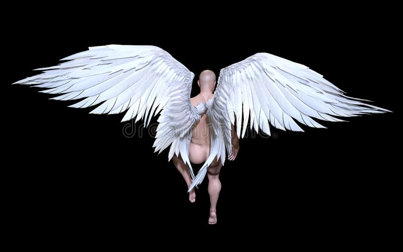 Angel Wings, Wing Plumage Isolated branco com trajeto de grampeamento ilustração royalty free