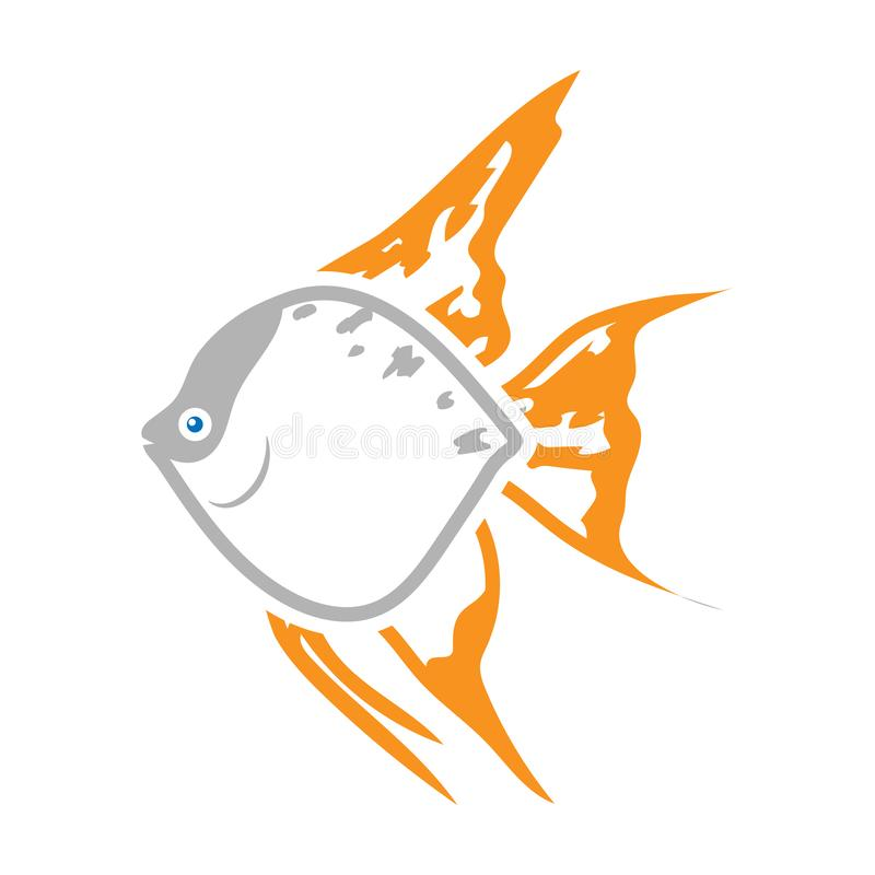 Angelfish common fish icon colour. Singe aquarium fish icon from the sea,ocean life colour. Angelfish common fish Icon colour. Singe aquarium fish Icon from the vector illustration