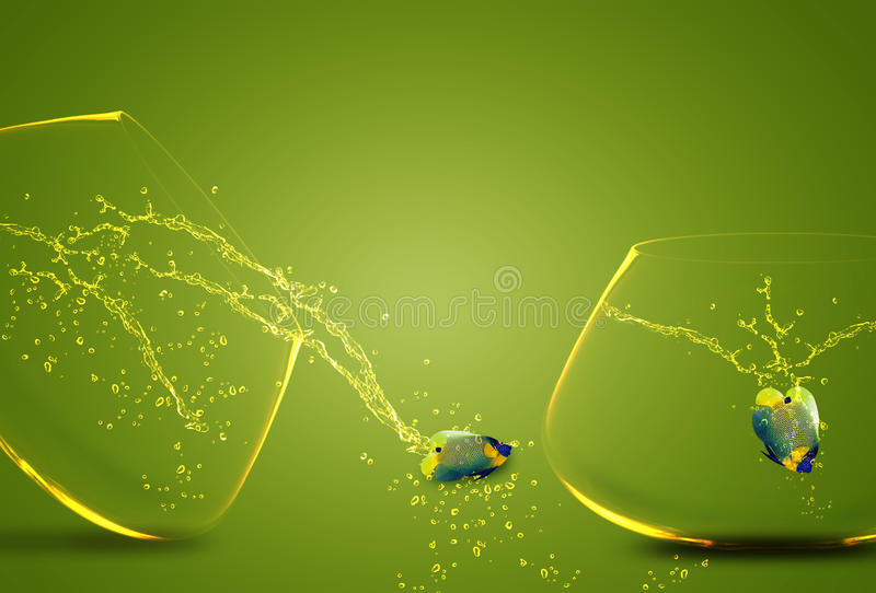 Download Angelfish Jumping Out Of  Fishbowl Stock Image - Image of diving, conceptual: 22360603
