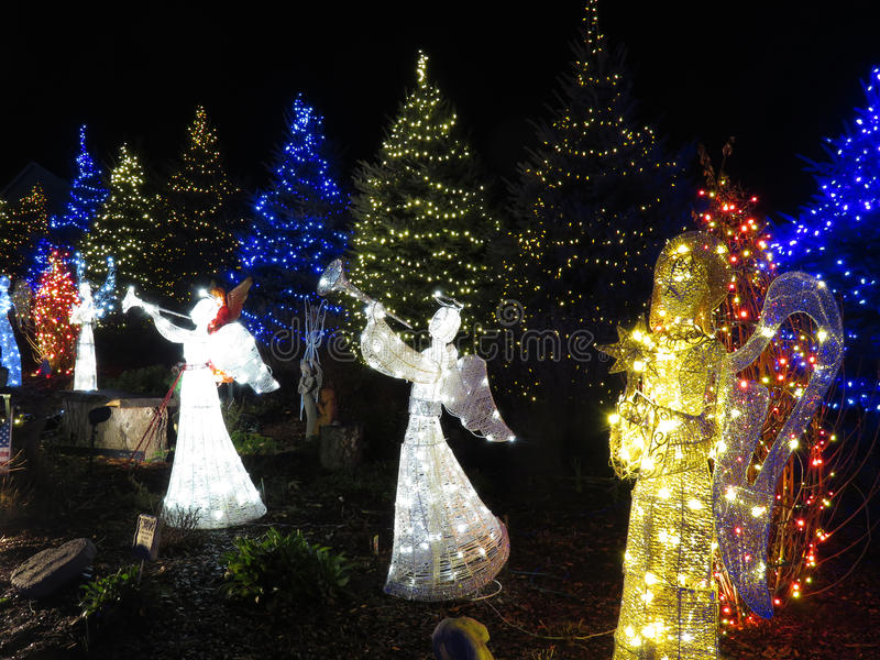 Angeli graziosi alla notte durante il Natale fotografia stock libera da diritti
