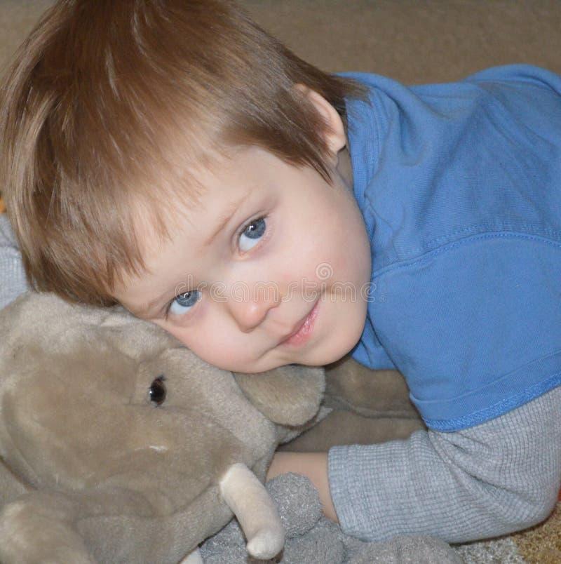 Download Angelic boy with elephant stock image. Image of angelic - 78530697