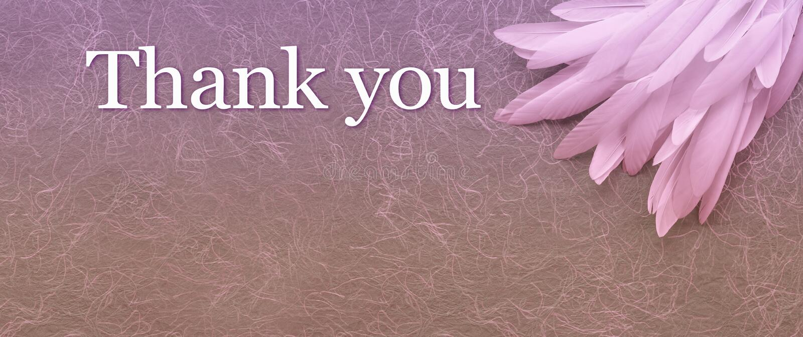 Angelic Thank You Pink Feather header Background. Random pile of thin white feathers placed in the top right corner, beside the words THANK YOU against a rustic stock image