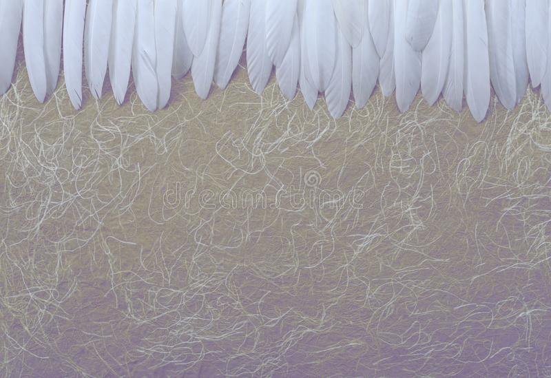 Angelic White Feather header Background. A neat row of long thin white feathers placed side by side against a rustic swirly hand made buff coloured paper stock image