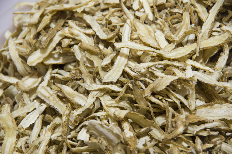 Angelica, is a kind of blood yiqi Chinese medicinal materials. Angelica is a blood yiqi Chinese medicinal materials stock photography