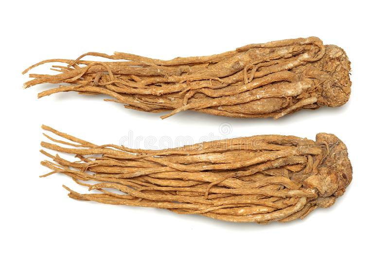 Angelica root. Used in chinese traditional herbal medicine, over white background. Radix angelicae sinensis stock photos