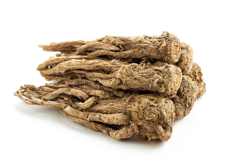 Angelica sinensis(Traditional Chinese Medicine). Angelica sinensis, commonly known as quai or female ginseng is a herb from the family Apiaceae, indigenous to royalty free stock photos