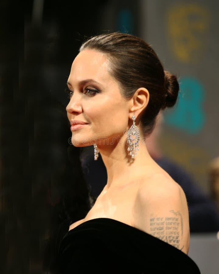 Angelina Jolie Actress royaltyfria bilder