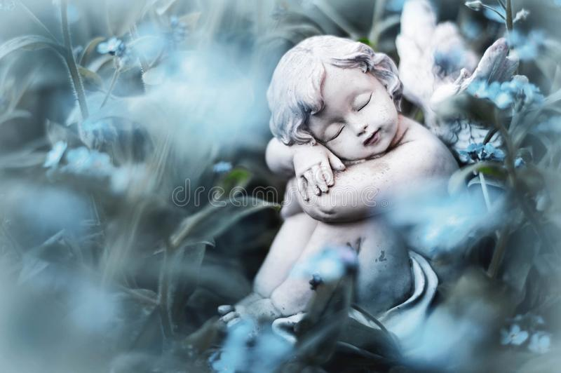 Angelo custode che dorme in fiori immagine stock