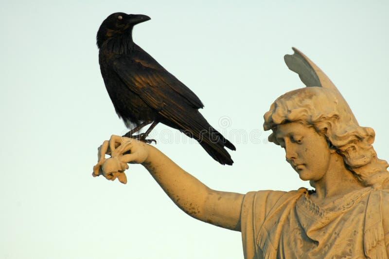 Angelo e corvo fotografia stock libera da diritti