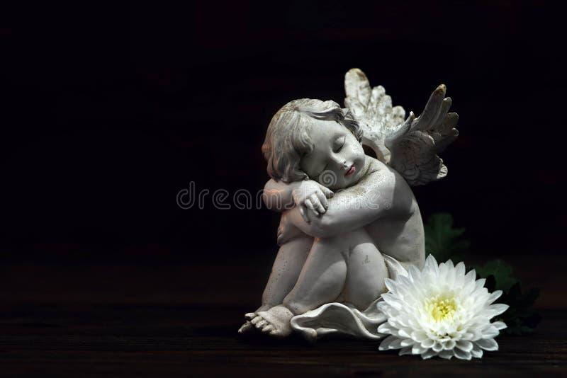 Angelo e fiore bianco su fondo scuro immagine stock