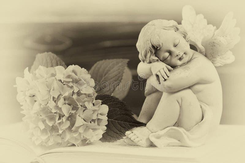 Angelo e fiore sul vecchio libro fotografia stock