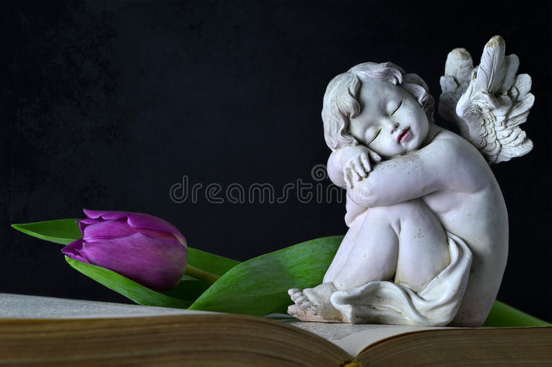 Angelo e tulipano fotografia stock