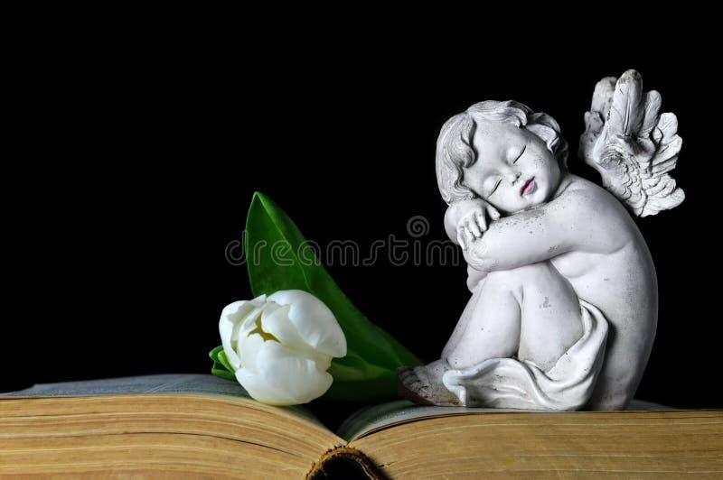 Angelo e tulipano bianco immagini stock