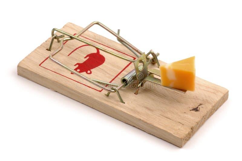 Angelockter Mousetrap lizenzfreies stockbild