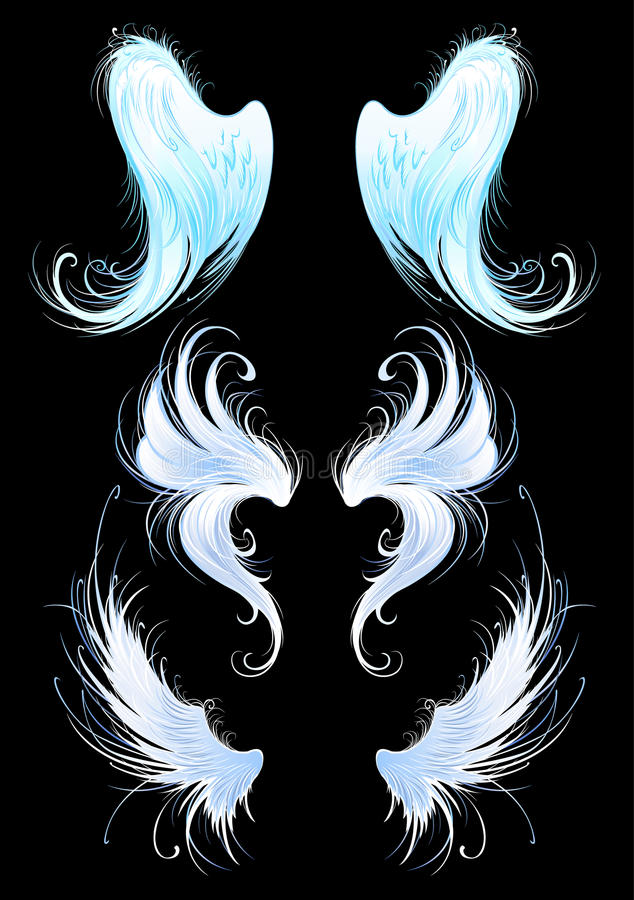 Angels wings on a black background