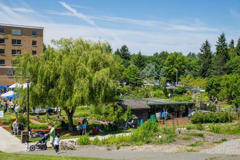 Angemessene Ansicht des Bastyr-Hochschulkrauts und -Lebensmittels von Campus arbeiten im Garten lizenzfreie stockfotos