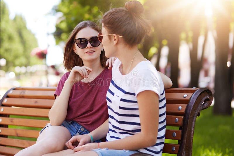 Angenehme gesprächige Mädchen haben nettes Gespräch über späteste Ereignisse in ihre Leben Entzückende Freunde sitzen auf Holzban lizenzfreie stockfotos