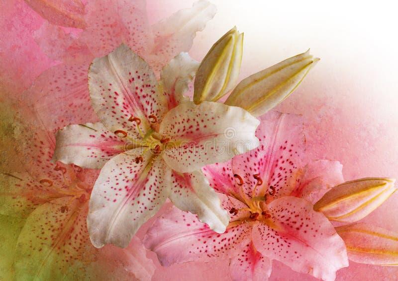 Angeredete Blumenabbildung stockbilder