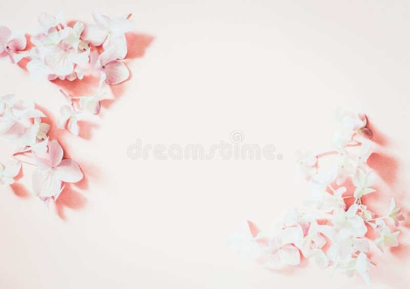 Angeredete weibliche Ebene legen auf blassen rosa Pastellhintergrund, Draufsicht Der Desktop der minimalen Frau mit Leerseitenspo lizenzfreies stockbild