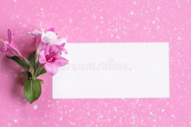 Angeredete weibliche Ebene legen auf blassen rosa Pastellhintergrund, Draufsicht Der Desktop der minimalen Frau mit Leerseitenspo stockfoto