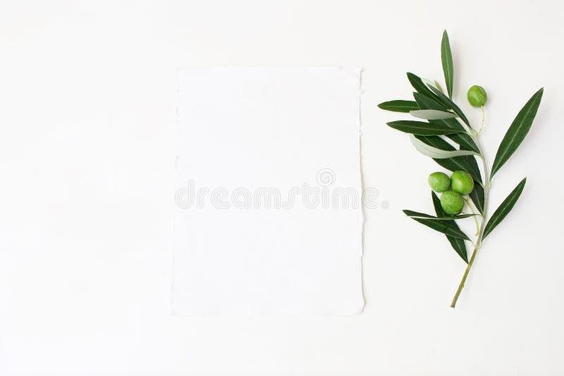 Angeredetes Foto auf Lager Tischplattenmodellszene der weiblichen Hochzeit mit grünem Ölzweig und weißer leerer vertikaler Papier stockbild