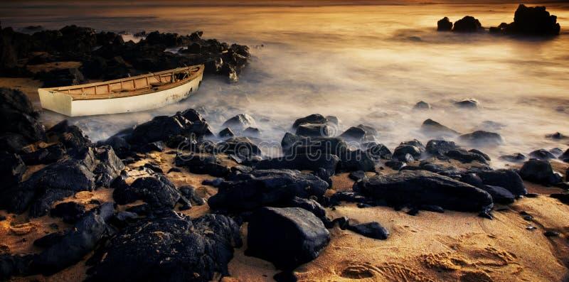 Angeschwemmt auf Felsen stockfoto