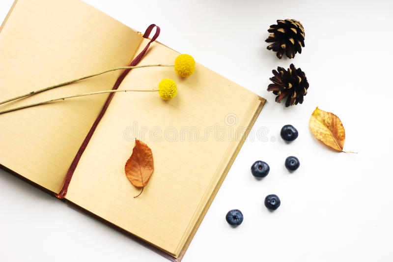 Angespornt bis zum Herbst stockbilder