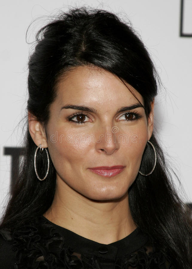 Angie Harmon. HOLLYWOOD, CALIFORNIA. Thursday December 7, 2006. Angie Harmon attends the Los Angeles Premiere of The Pursuit of Happyness held at the Mann stock photo