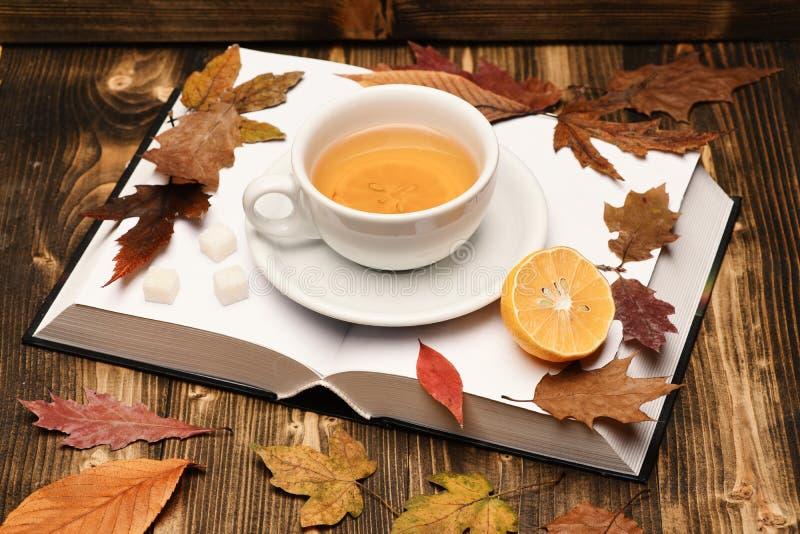 Angielski herbaciany czas i czytelniczy wieczór pojęcie Filiżanka herbata fotografia stock