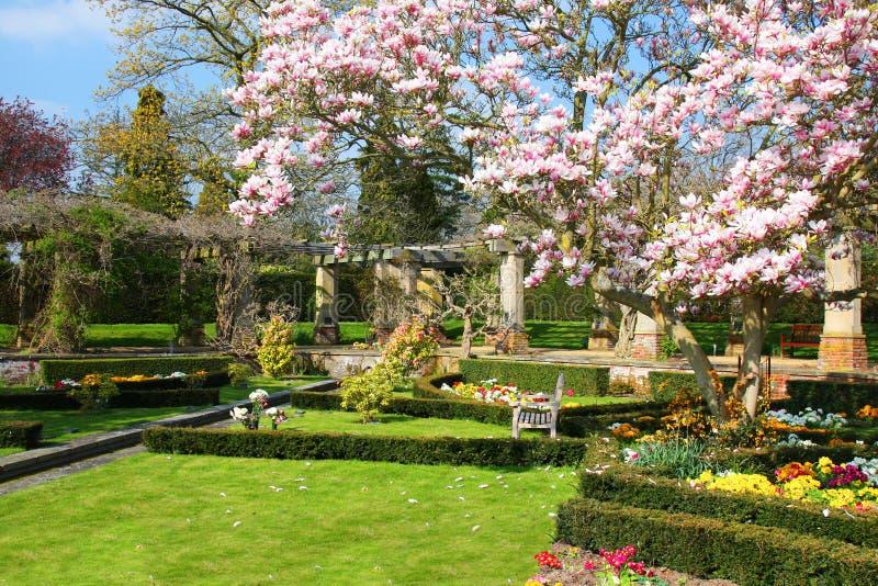 Angielszczyzna ogród w wiośnie obrazy royalty free
