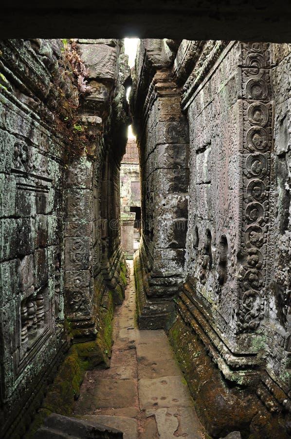 angkor cambodia khan preahtempel fotografering för bildbyråer