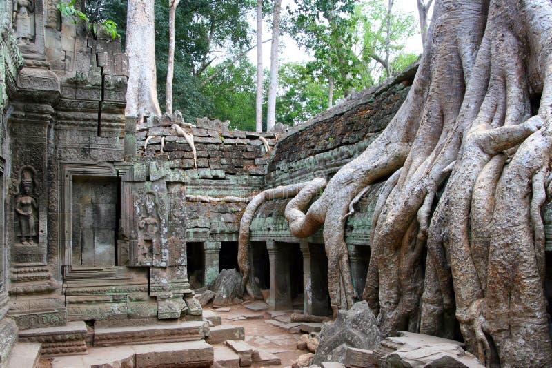 Angkor Preah Khan stock photo