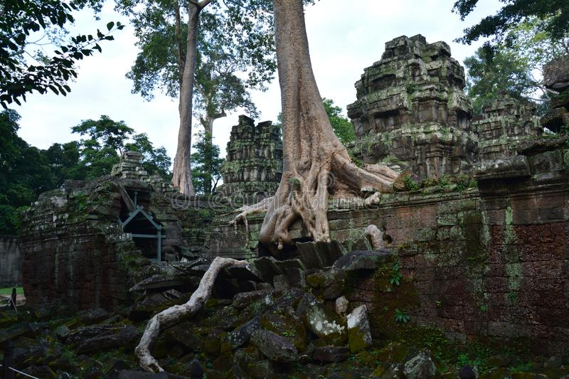 Angkor Temples near Siem Reap in Cambodia Asia. The beautiful and impressive temples of Angkor in Cambodia in the middle of the Jungle. Amazing landmarks in this stock photography