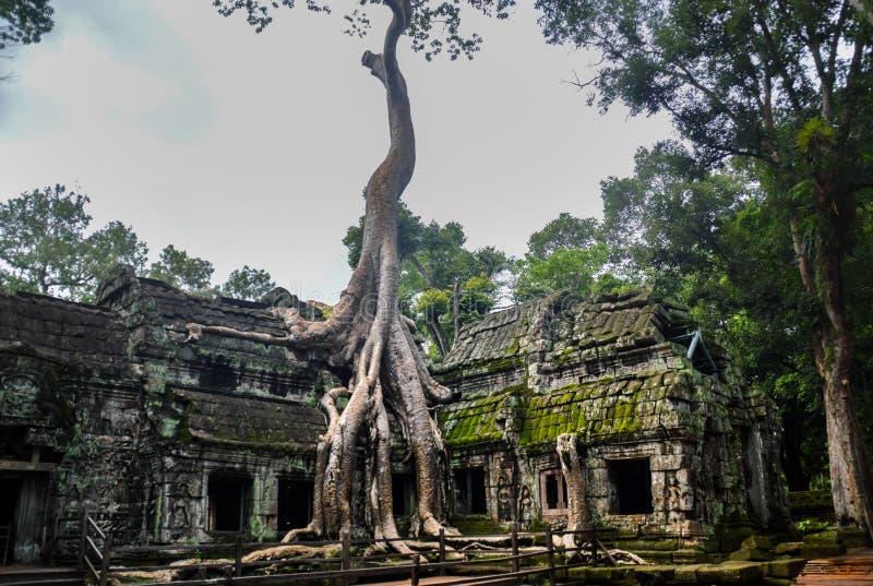 Angkor Thom royaltyfri fotografi