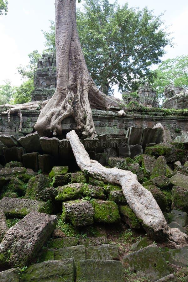 Download Angkor Thom, Cambodia stock image. Image of ruin, asian - 83708901