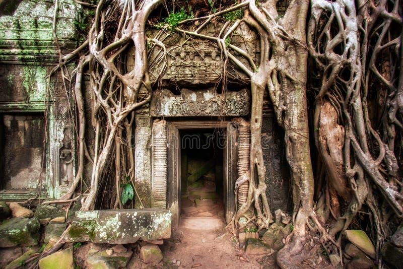 Angkor Thom Cambodia tempel royaltyfri foto