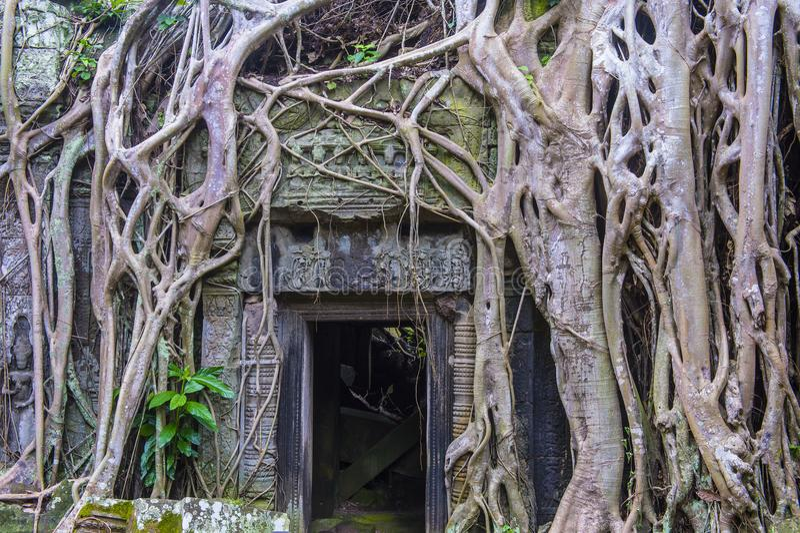 Angkor Thom Camboya fotos de archivo