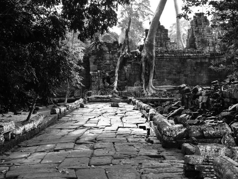 Angkor Thom hallways royalty free stock photo