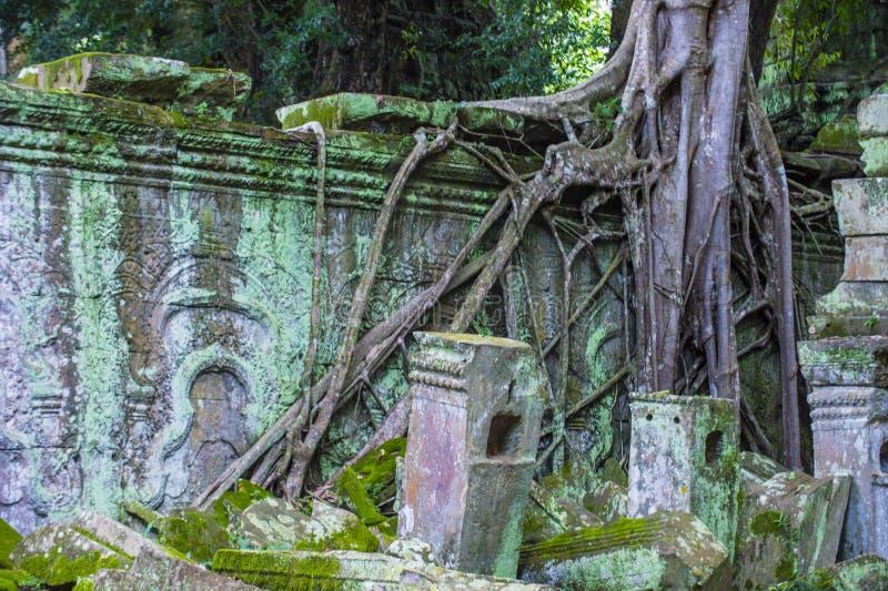 Angkor Thom Kambodża zdjęcie royalty free