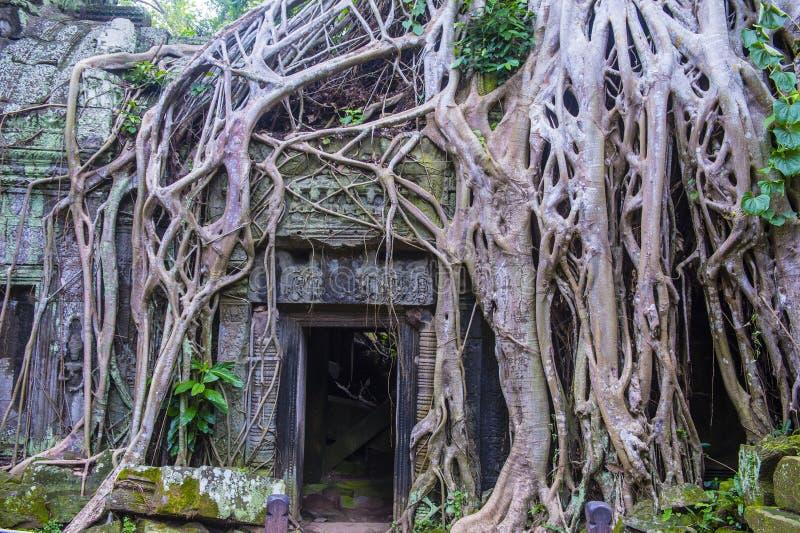 Angkor Thom Kambodża fotografia royalty free